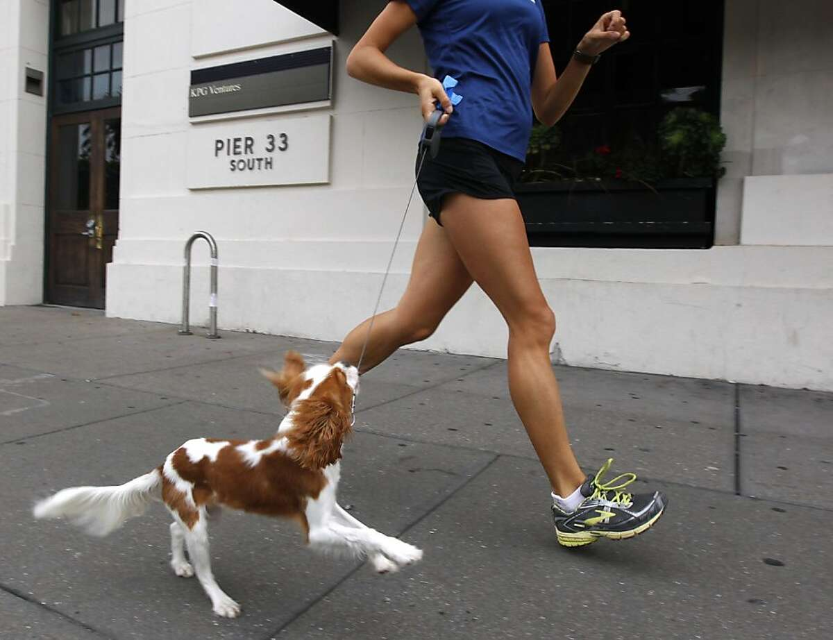 Cooper tries to keep pace with Joanna Reuland on her training session for the San Francisco Marathon on The Embarcadero in San Francisco, Calif. on Tuesday, July 10, 2012.