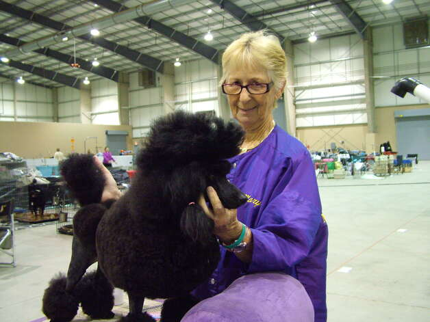 Day 1 of the River City Cluster of Dog Shows Photo: Pam Howell