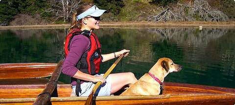 Dog-friendly California destinations - SFGate