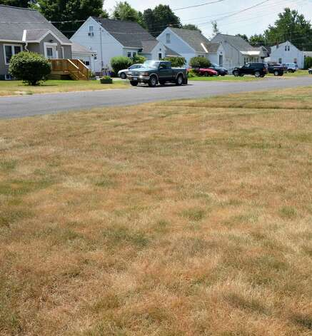 Lawns along Palma Avenue in Rotterdam show the effects a recent hot, dry weather Thursday July 12, 2012.  (John Carl D'Annibale / Times Union) Photo: John Carl D'Annibale / 00018431A