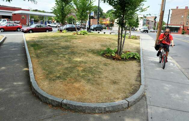 A small island of grass near the corner of Madison and Delaware Avenue shows the effects a recent hot, dry weather Thursday July 12, 2012.  (John Carl D'Annibale / Times Union) Photo: John Carl D'Annibale / 00018431A