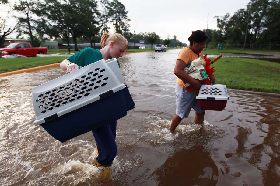Rebecca Godsey, left, helps a woman with her dogs as they walk across slow-receding floodwaters Friday morning near  Huffmeister and Bergenia in the Cypress area. The water was a result of  heavy rains Thursday. Photo: Johnny Hanson, Houston Chronicle