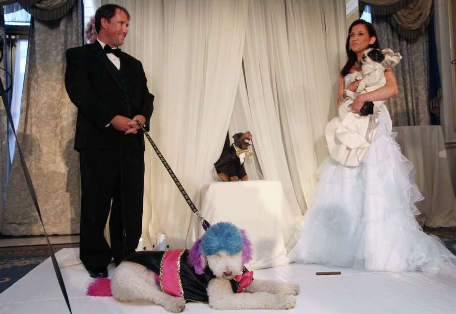 "Jake Pasternak, from Richmond, Virginia, left, stands with his poodle Chilly, as Wendy Diamond, of New York, right, holds her Coton de Tulear Baby Hope Diamond, during their dogs' ""wedding"" officiated by Triumph the Insult Comic Dog, played by comedian Robert Smigel, center, Thursday July 12, 2012 in New York.  The black tie fundraiser, which was the most expensive wedding for pets, was held to benefit the Humane Society of New York. Photo: Tina Fineberg, AP / FR73987 AP"