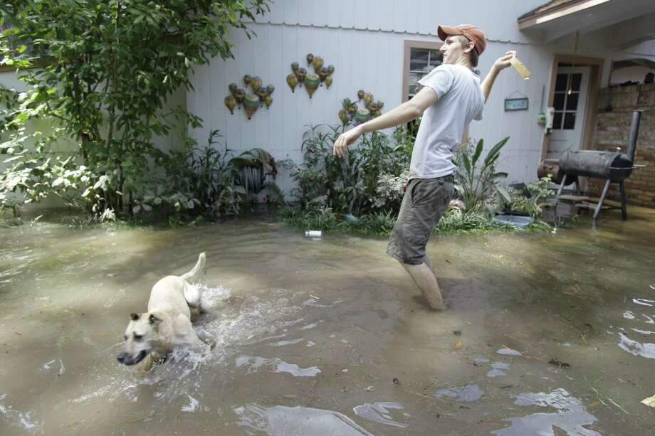 Joshua Harris plays with his dog, Gizmo, in the flooded backyard of his family's home on Hickory Hill in the Windwood subdivision Saturday in Cypress. Photo: .