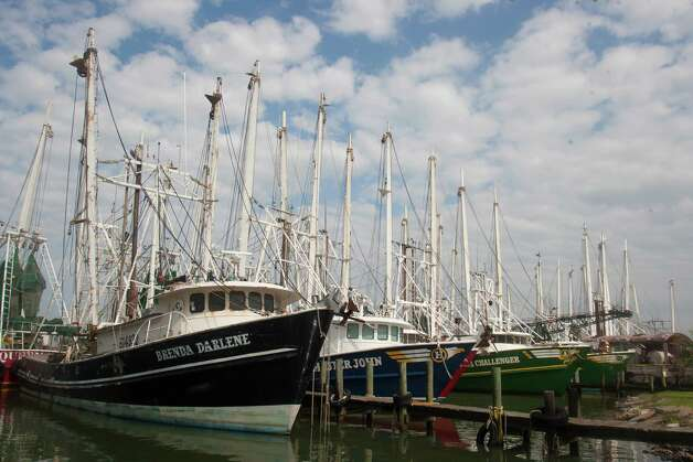 Shrimp boats in Galveston prepare for the season, which started 30 minutes after sunrise today. Fewer than 900 boats are licensed to troll the Gulf. Photo: J. Patric Schneider, For The Chronicle / Houston Chronicle