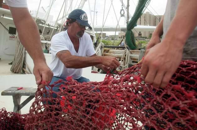 The National Oceanic and Atmospheric Administration predicted Texas' shrimpers will harvest 27.4 million pounds of brown shrimp this season — 6 percent above average. Photo: J. Patric Schneider, For The Chronicle / Houston Chronicle