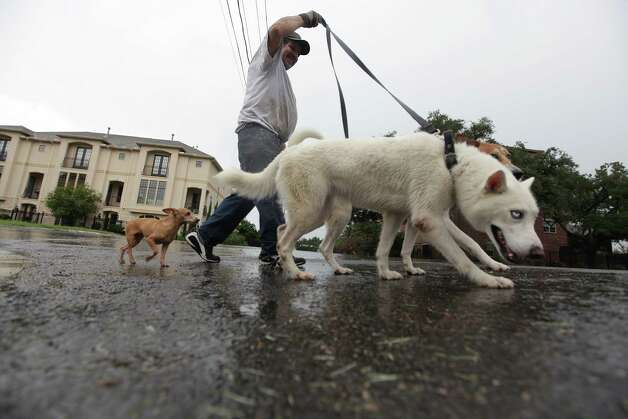 Gabriel Leon is caught in the rain while walking his three dogs near the museum district on Sunday, July 15, 2012, in Houston. Photo: Mayra Beltran, Houston Chronicle / © 2012 Houston Chronicle