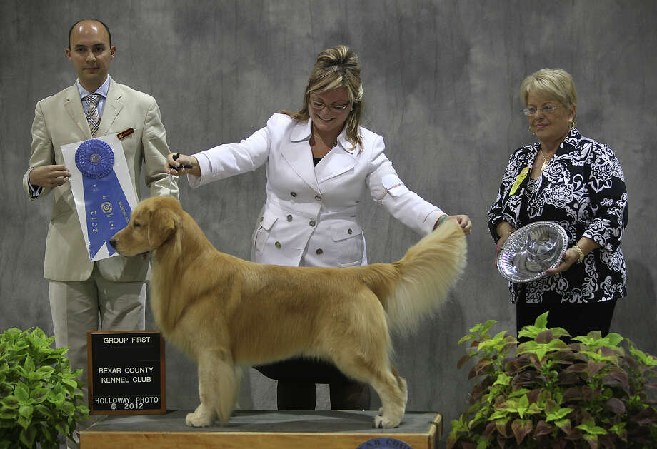 Brianna Bischoff poses with her Golden Retriever, Sonny, after winning first place in the sporting category during the River City Cluster of Dog Shows for Bexar County Kennel Club on Sunday, July 15, 2012 at Freeman Coliseum. Photo: Julysa Sosa, SAN ANTONIO EXPRESS-NEWS / SAN ANTONIO EXPRESS-NEWS