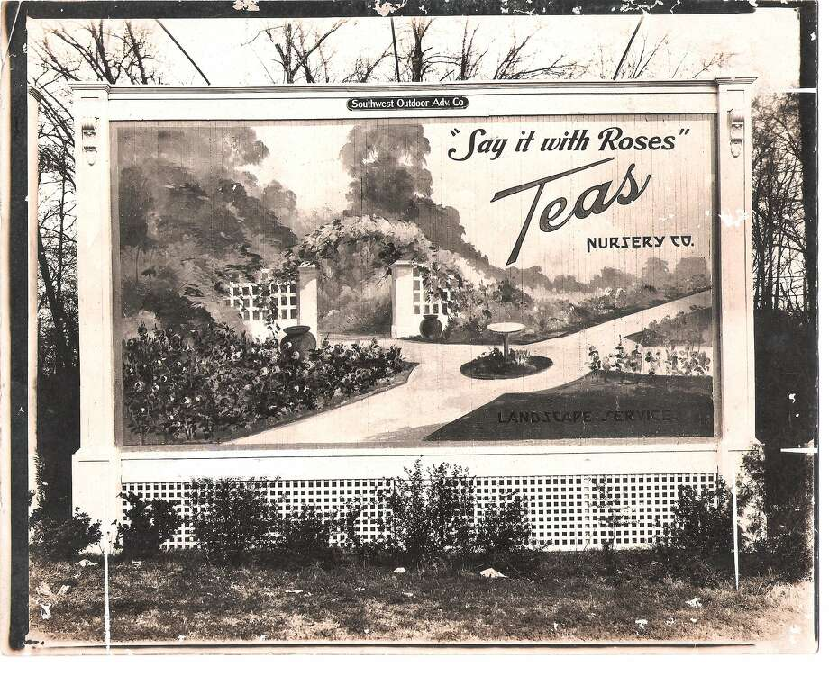 Many neighborhoods and streets were landscaped with plants from Bellaire-based Teas Nursery. Photo: Teas Nursery Family Photos