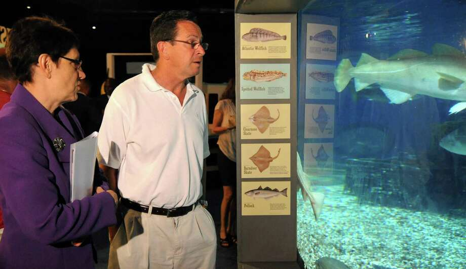 Governor Dannel Malloy gets a tour of the Maritime Aquarium in Norwalk from President and CEO Jennifer Herring to promote state tourism destinations. Photo: Lindsay Niegelberg / Stamford Advocate