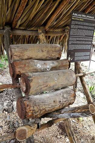 A rustic apiary made of hollow logs displays the cultivation of the stingless melipona bees, which play a crucial role in cocoa's growth  Photo: Christine Delsol, Special To SFGate