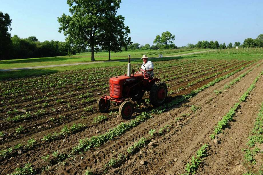 Fred Candee drives a tractor on his farm on Morehouse Rd. in Easton, Conn. on Tuesday July 17, 2012. Candee said that the lack of rain would mean delays for his tomato crop. Photo: Christian Abraham / Connecticut Post