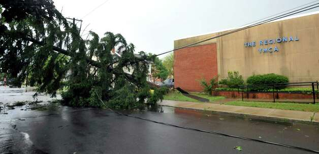 Wednesday's storm takes down a tree that falls on power lines and a parked car on Boughton Street in Danbury July 18, 2012. Photo: Michael Duffy