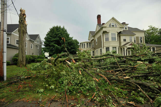 The top of a tree along Deer Hill Avenue was stripped away and fell to the ground in Danbury after a strong thunderstorm went through the city on Wednesday, July 18, 2012. Photo: Jason Rearick