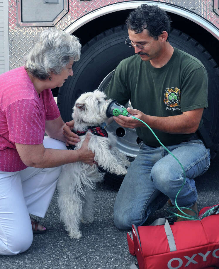 Susan Schullery of Kent assists Kent Volunteer Fire Department ambulance Chief Mike Petrone as Mrs. Schulleryís dog, Sadie, tries on one of the oxygen masks her owners recently purchased and donated to the fire department.  Courtesy of Kent Volunteer Fire Department Photo: Contributed Photo