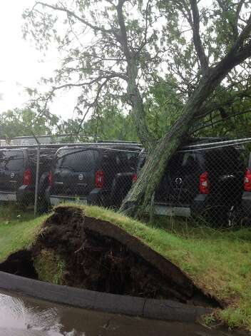 A tree is blown down by a violent thunderstorm, July 19. Photo contributed by Chris Bryant. Photo: Contributed / Connecticut Post Contributed