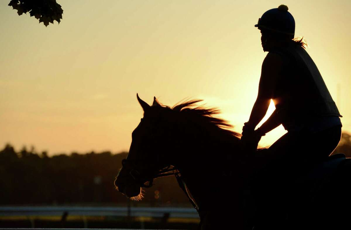 Thoroughbreds out this morning for their exercise on the day before the opening of the 144th meeting of the Saratoga Race Course in Saratoga Springs, N.Y. July 19, 2012.(Skip Dickstein / Times Union)