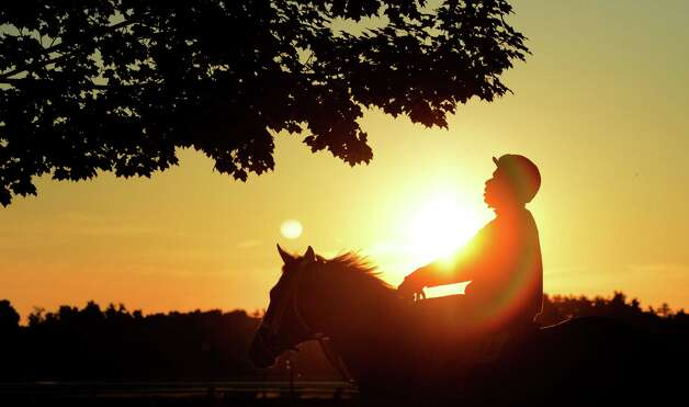 Thoroughbreds out  for their exercise on the day before the opening of the 144th meeting of the Saratoga Race Course in Saratoga Springs, N.Y. July 19, 2012.(Skip Dickstein / Times Union) Photo: SKIP DICKSTEIN