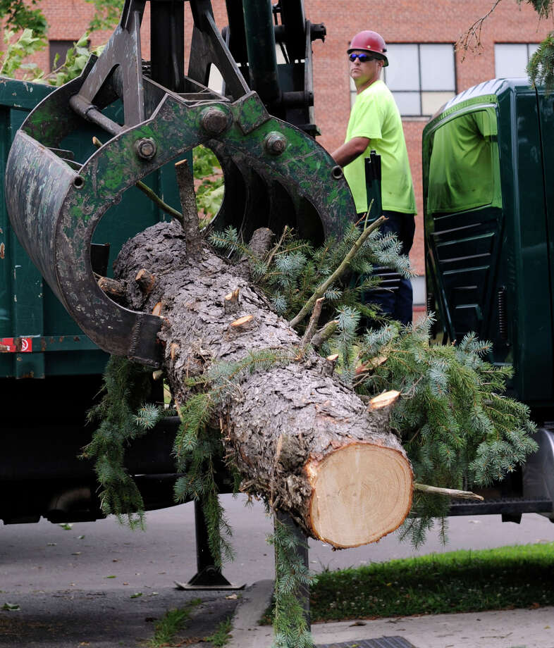 Heath Hobart, with the city forestry department, works a log loader at Rogers Park where city workers are still cleaning up debris from Wednesday storm, Thursday, July 19, 2012. Photo: Carol Kaliff / The News-Times