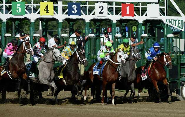 Horse Racing Starting Gate For Sale Images & Pictures - Becuo