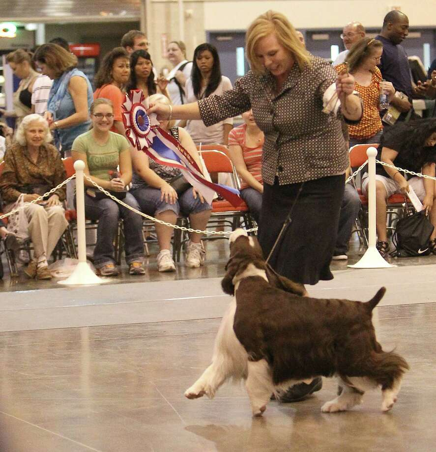 Robin Novack enjoys a moment in the spotlight Sunday with Peyton, an English Springer Spaniel, after Peyton won Best of Show at the 35th annual Reliant Park World Series of Dog Shows. Photo: Karen Warren / © 2012  Houston Chronicle