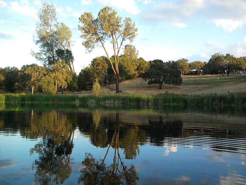 Big fish little pond dating
