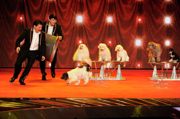 AMERICA'S GOT TALENT -- Episode 720 -- Pictured: Olate Dogs -- (Photo by: Virginia Sherwood/NBC) Photo: NBC, Virginia Sherwood/NBC / 2012 NBCUniversal Media, LLC..
