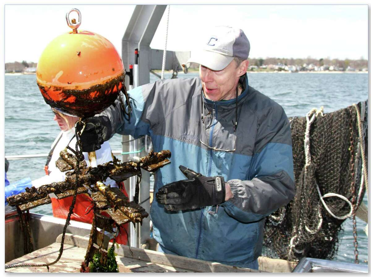 Mystic Aquarium's Ocean Science & Technology Day will take place Friday, Aug. 3, with special programs, updates and demonstrations of new technology.