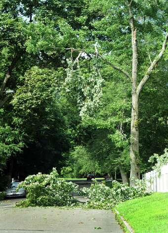 A tree limb knocked down in a late day storm on Thursday July 26, 2012, still lies on Bulkley Street in Fairfield, Conn. on Friday July 27, 2012. Photo: Cathy Zuraw / Connecticut Post