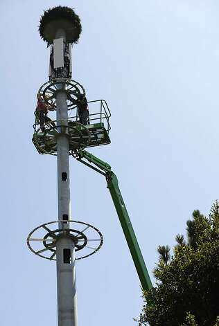 "Technicians work on T-Mobile's cell tower on Thursday, July 26, 2012 in Castro Valley, Calif. Alameda County code enforcement officers has forced T-mobile to add ""branches""  to make T-Mobile's cell tower resemble a tree and to look less phallic. Photo: Yue Wu, The Chronicle"