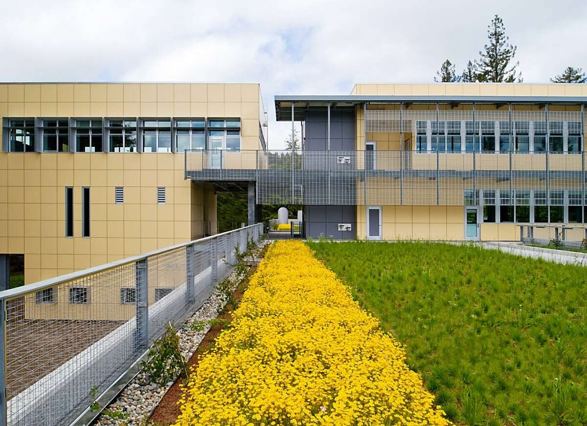 The College of Marin Fine Arts Building in Kentfield, designed by Marcy Wong Donn Logan Architects, deflects sunlight against its south-facing facade with metal grates and, on the left, unusual sunshades that frame each window and are shaped like upside-down U's. The building also has a landscaped roof as another sustainable design feature.