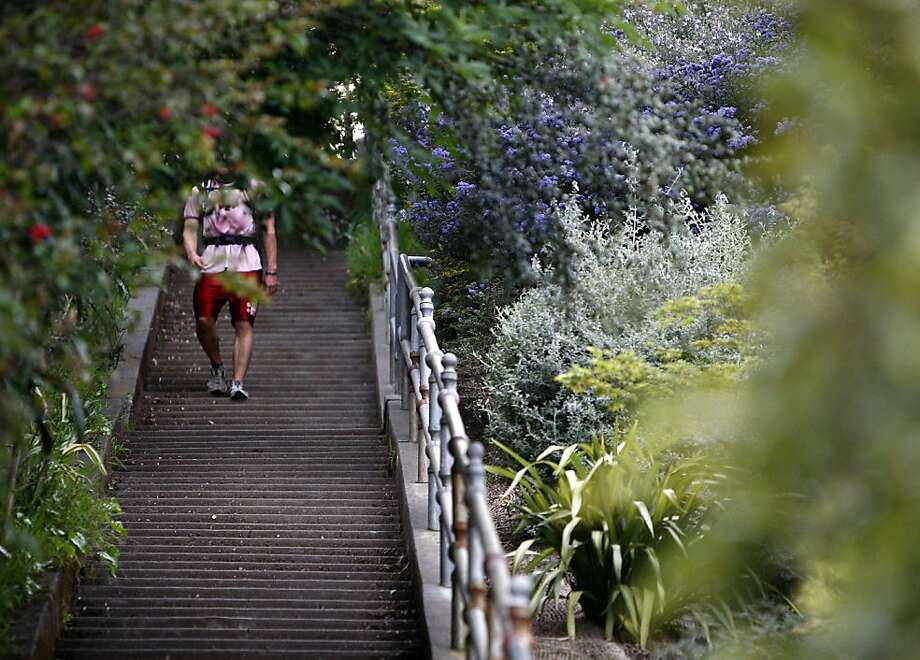 larkspur steps offer grueling workout