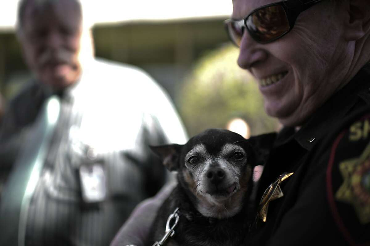 One Sheriff officer holds Mello, around seven-year old dog after the graduation day for some reformed trouble-maker dogs on Tuesday, July 31, 2012 in Redwood City, Calif.