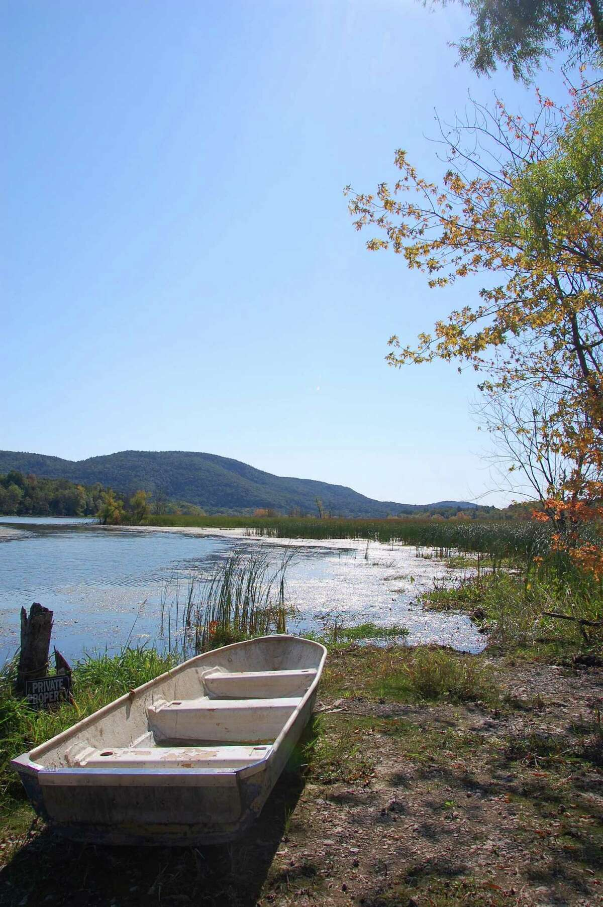The state is adding Lake Champlain shoreline at Chubbs Dock in northern Washington County to the forever-wild Forest Preserve within the Adirondack Park. (Photo by state Department of Environmental Conservation)