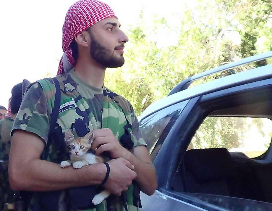 Paws in the hostilities: A Syrian rebel takes a break to pet a 