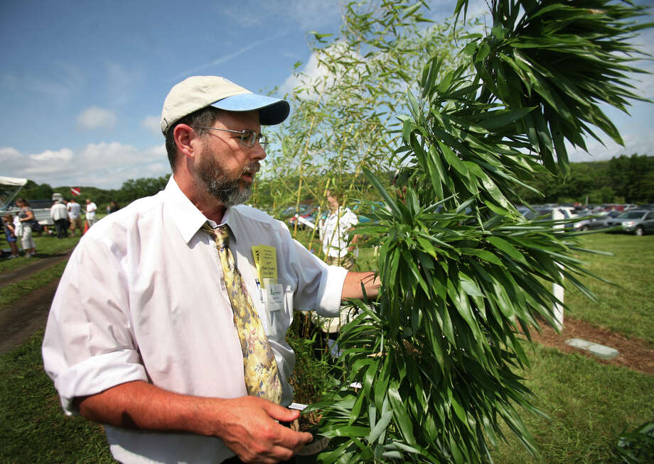 Jeffrey Ward of the Connecticut Agricultural Experiment Station discusses the invasive aspects or ornamental bamboo plants at the station's annual Plant Science Day at Lockwood Farm in Hamden on Wednesday, August 1, 2012. Photo: Brian A. Pounds / Connecticut Post
