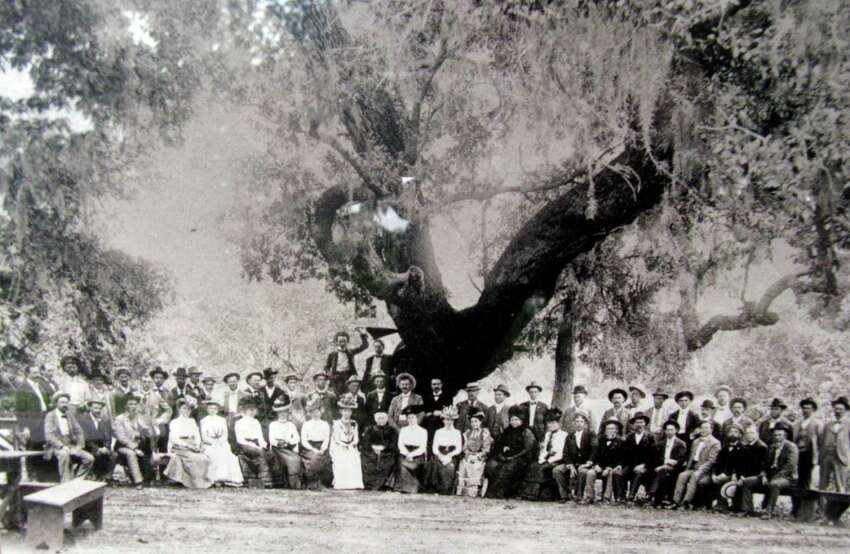 This photo, dated 1901, is believed to show Helena Landa (center) and others gathered beneath what's now known as Founders' Oak at the site of what's now Landa Park.