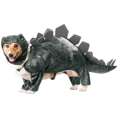 STEGOSAURUS DOG COSTUME: Your dog will definitely try to eat you in your sleep if you make him wear this. Never mind that the Stegosaurus was a plant eater. (View on Amazon.)