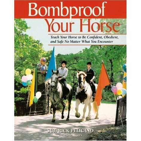 """BOMBPROOF YOUR HORSE:"" Easily one of the strangest titles Amazon has to offer. (View on Amazon.)"
