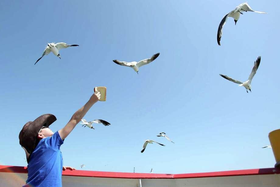 Galveston Ferry Boat S Maiden Voyage Houston Chronicle