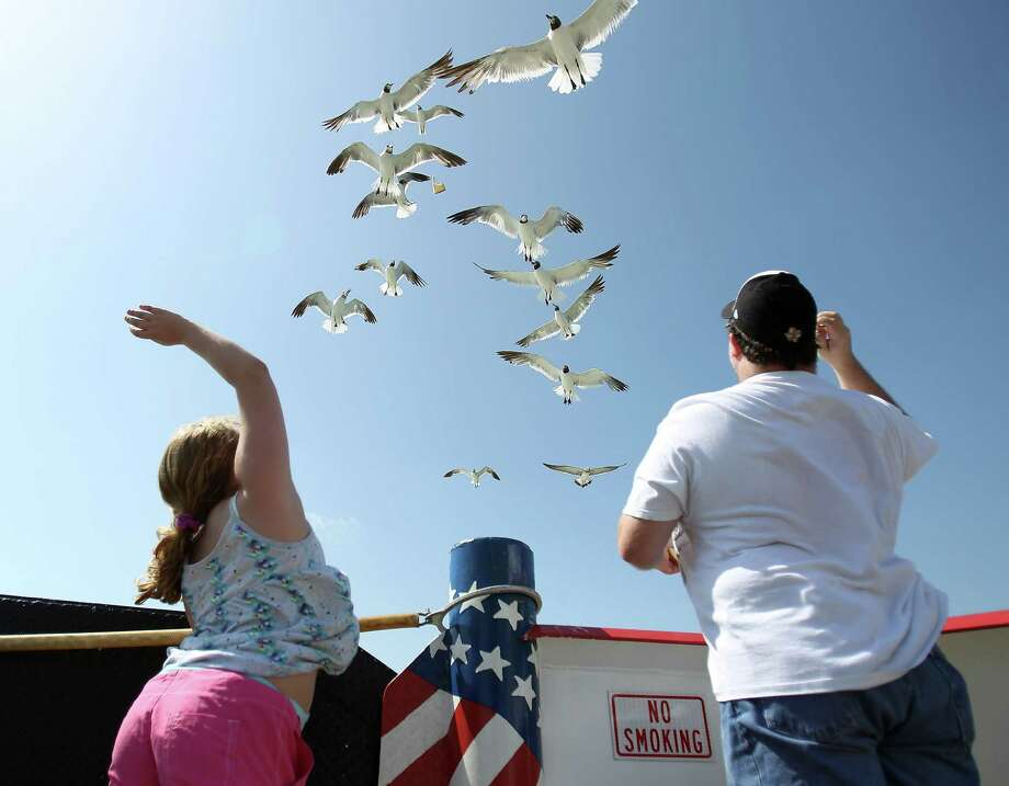 Take the ferryThis free and roughly 20 minute ride between Port Bolivar and Galveston is a great way to see the beautiful Gulf coast.  Feed the seagulls and maybe even a dolphin or two. Photo: Karen Warren, Houston Chronicle / © 2012  Houston Chronicle