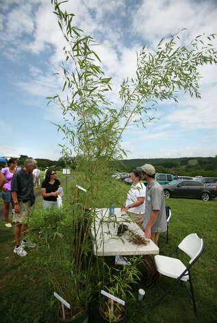 The Connecticut Agricultural Experiment Station's annual Plant Science Day at Lockwood Farm in Hamden on Wednesday, August 1, 2012. Photo: Brian A. Pounds / Connecticut Post