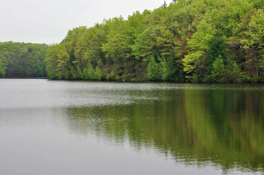 The New Canaan Reservoir occasionally spills over into the Five Mile River. Photo: Contributed Photo