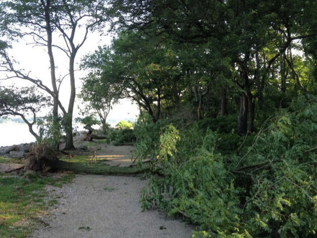 Storm damage at Greenwich Point Monday, Aug. 6, 2012. Photo: Contributed Photo