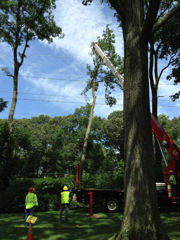 A crew works on a tree that came down on transmission lines on Summit Road in Riverside, cutting power to most of Greenwich Monday, Aug. 6, 2012. Photo: Lisa Chamoff / Greenwich Time