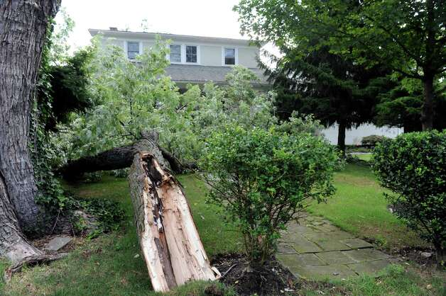 A tree fell near a home at 18 Grimes Road in Old Greenwich, Monday, Aug 6, 2012. A violent storm struck Greenwich Sunday night, knocking down trees that damaged homes in Old Greenwich. Photo: Helen Neafsey / Greenwich Time