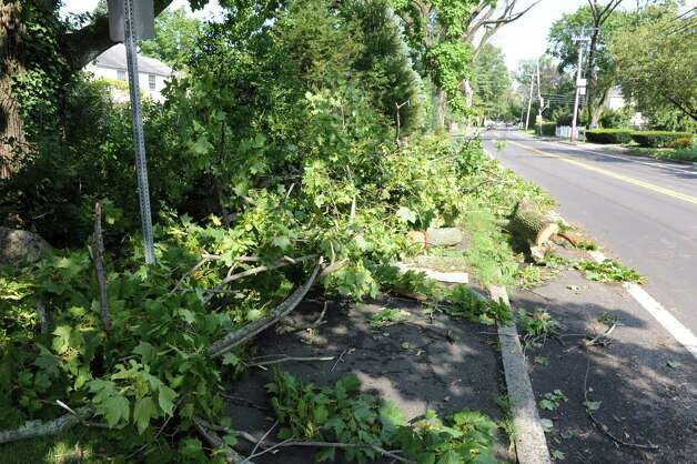 Tree branches along Sound Beach Avenue in Old Greenwich, Monday, Aug. 6, 2012. A violent storm struck Greenwich Sunday night, knocking down trees that damaged homes in Old Greenwich. Photo: Helen Neafsey / Greenwich Time