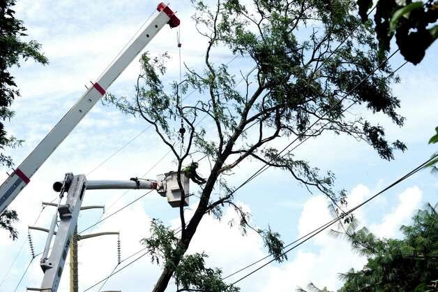 A Lewis Tree Service worker cuts down limbs in order get a tree off transmission lines at Summit Road and Palmer Terrace in Riverside, while Connecticut Light & Power and Metro-North Railroad representatives watch Monday, Aug. 6, 2012. A violent storm struck Greenwich Sunday night, knocking down trees and damaging homes, primarily in Old Greenwich. Photo: Helen Neafsey / Greenwich Time
