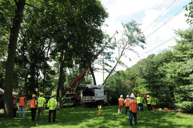 Lewis Tree Service, Connecticut Light & Power and Metro-North Railroad representatives worked to free a fallen tree from transmission lines at Summit Road and Palmer Terrace in Riverside Monday, Aug. 6, 2012. A violent storm struck Greenwich Sunday night, knocking down trees and damaging homes, primarily in Old Greenwich. Photo: Helen Neafsey / Greenwich Time