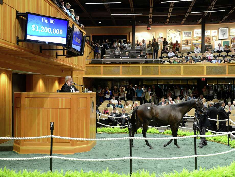 Hip #80 sells for $1.2M and the ticket was signed by John Furgeson at the Saratoga Yearling Sales in Saratoga Springs, N.Y.  August 6, 2012.  (Skip Dickstein/Times Union) Photo: Skip Dickstein